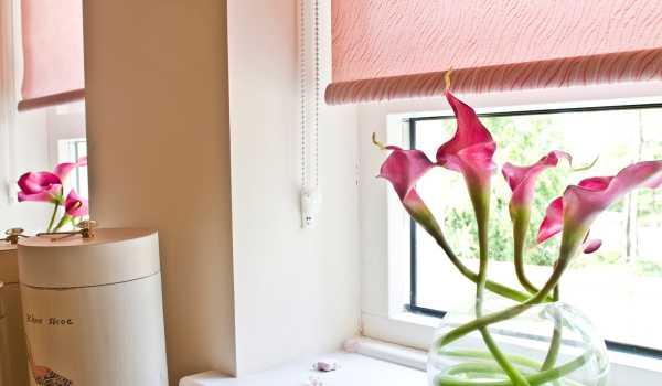 home roller blinds