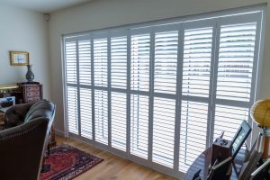 What are the Best Blinds for Cat Owners?